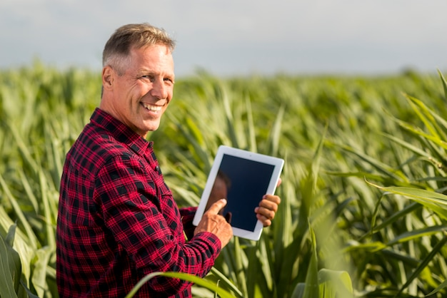 Sideview man with a tablet in a maize field mock-up
