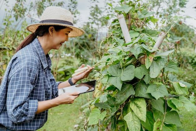 Donna asiatica lateralmente studiando piante diverse con un tablet