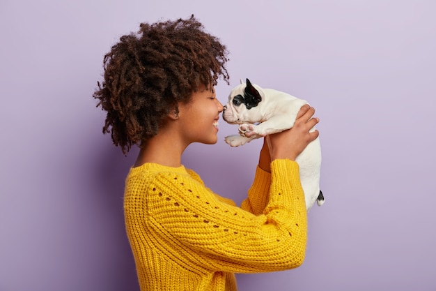 Sideways shot of cheerful afro american woman plays with sweety black and white french bulldog puppy, touch small nose