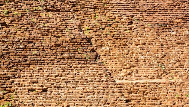 Сигирия шри-ланка, стена буддийского храма, всемирно известное живописное туристическое место. каменная гора. достопримечательности под защитой юнеско