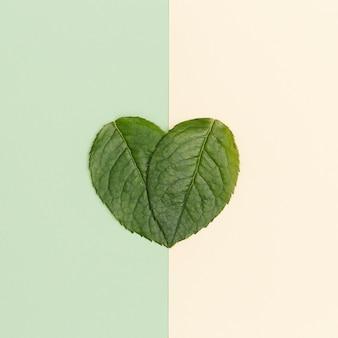 종이 바탕에 녹색 심장 모양의 잎으로 서명