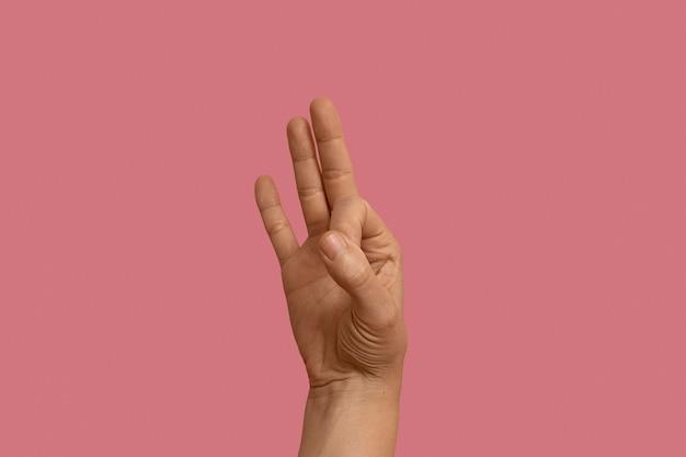 ピンクで分離された手話ジェスチャー