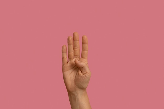 핑크에 고립 된 수화 제스처