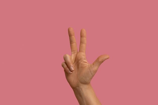 Жест языка жестов, изолированные на розовом