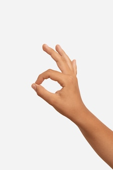 Sign language gesture isolated on white