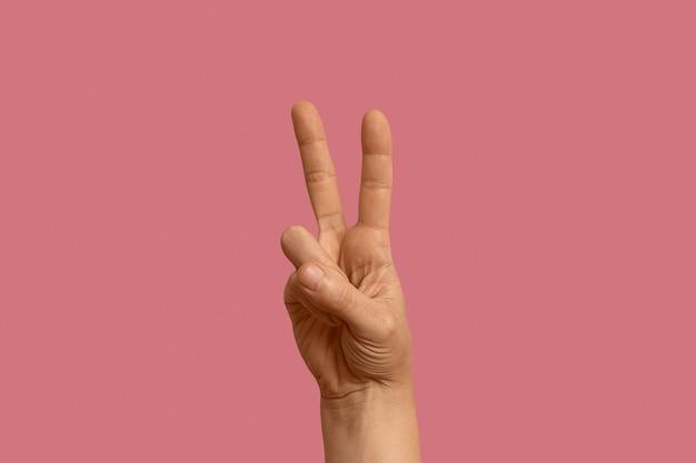 Символ языка жестов, изолированные на розовом