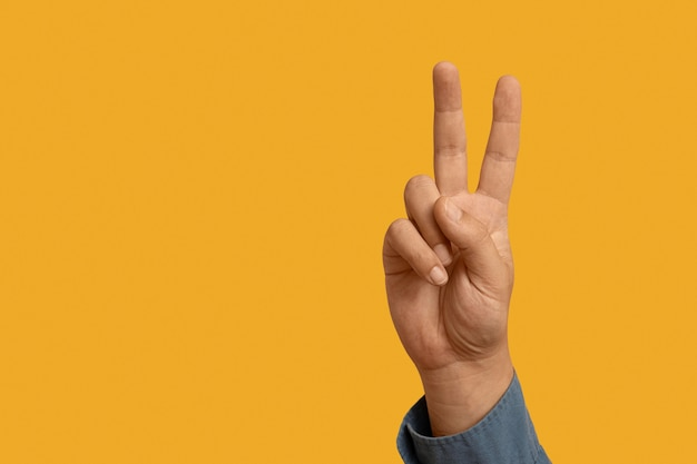 Sign language symbol with copy space