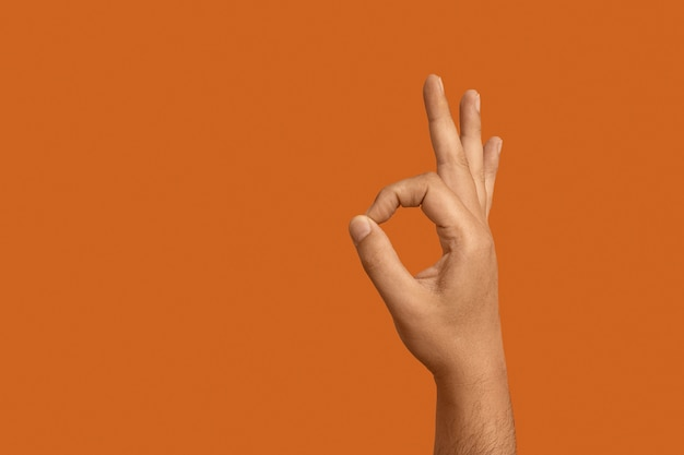 Sign language with copy space