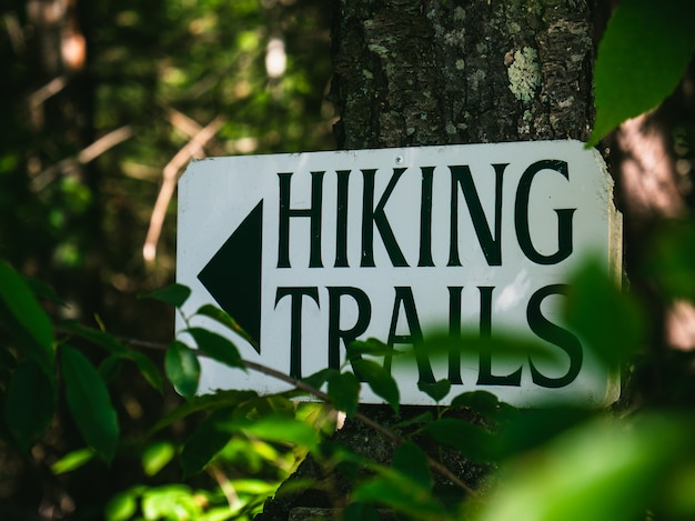 Sign on a tree trunk that points to the hiking trails