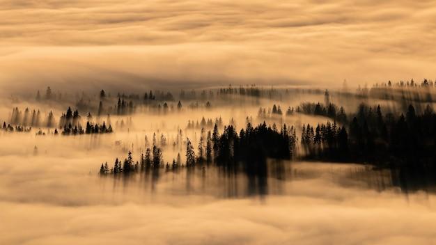 Тихий утренний пейзаж в осенней природе с восходом солнца над облаками
