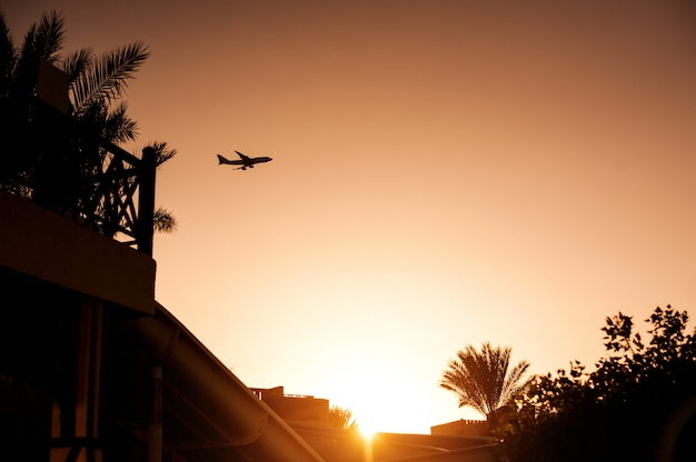 Silhouette airplane above tropical resort in egypt