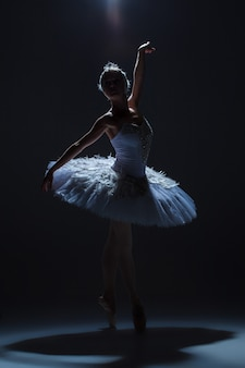 Silhouette of the ballerina  in the role of a white swan on dack background