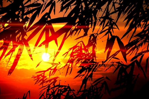 실루엣 대나무 잎 질감 배경