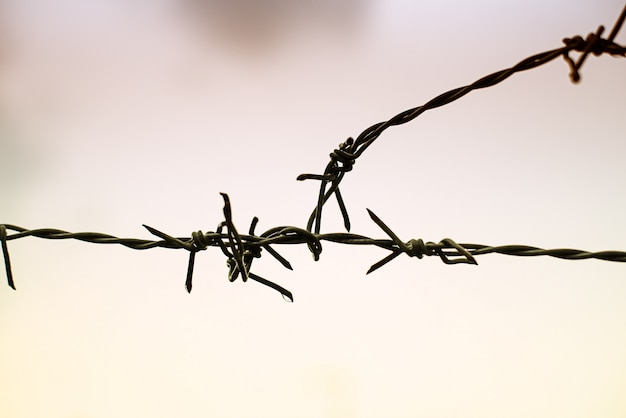 Silhouette barbwire stacked in line on sky background