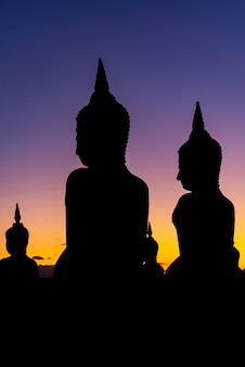 Silhouette big buddha stature with color of sky twilight, public in thailand