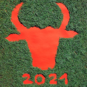 Silhouette of a bull's head made of christmas needles on a red background. symbol of 2021.