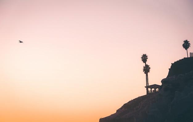 Siluetta di una scogliera al tramonto con un pellicano che vola in lontananza con spazio per il testo