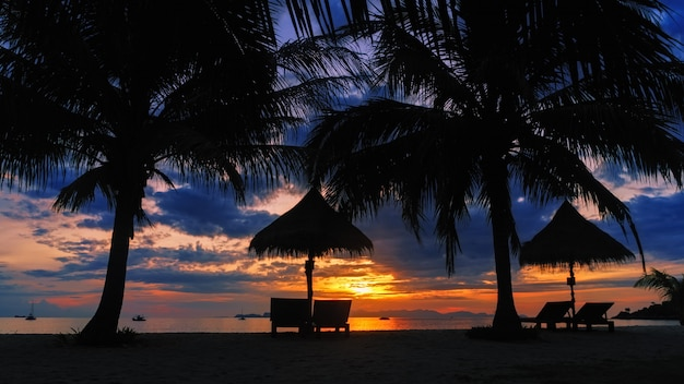 Silhouette coconut palm tree with lounge chairs on tropical beach at vivid sunset time
