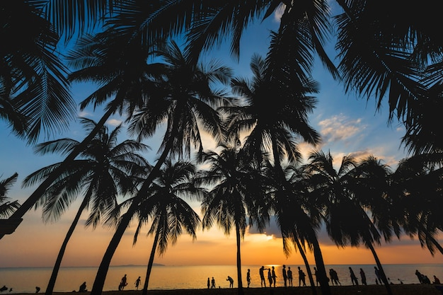 Силуэт кокосовой пальмы с радостью людей - лето на пляже