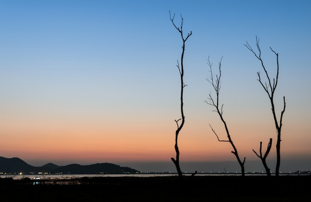 Silhouette dry tree and lake at twilight view
