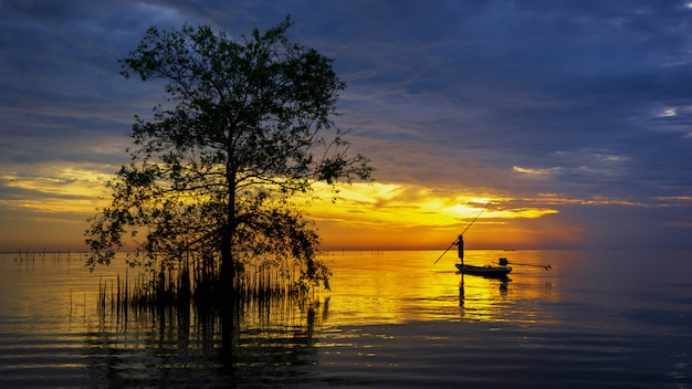 Silhouette of fisherman in boat with mangrove tree in lake on sunrise.