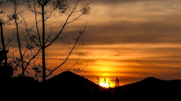 Силуэт изображения - закат за горой и деревьями