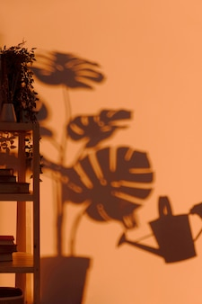 Silhouette of interior plant on the wall