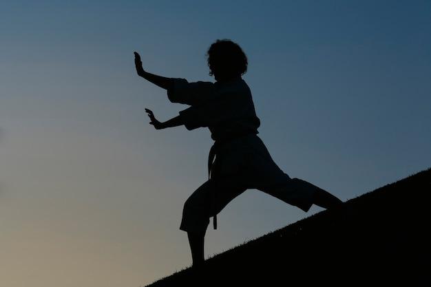 Силуэт женщины-карате в кимоно в атакующей позиции. концепция карате и боевых искусств. на фоне парка.