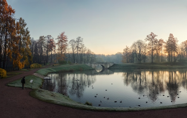 朝秋の公園で孤独な男のシルエット。ガッチナのパレスパークでの霧の秋の朝。ロシア。