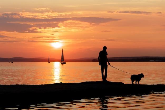 어느 날 붉은 석양과 함께 해변에서 개를 산책시키는 사람의 실루엣