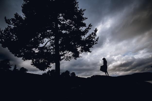 劇的な空を背景に木の下に立っているドレスを着た女性のシルエット