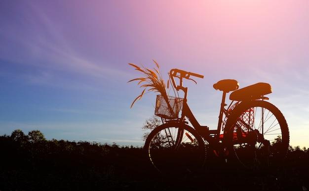 자연 풍경에 푸른 하늘이 있는 자전거와 잔디 꽃의 실루엣, 일몰 배경의 자전거