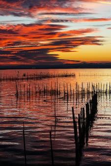 スペイン東部の淡水ラグーンと河口であるバレンシアのアルブフェラの夕暮れ時にポールに立っている鳥のシルエット。