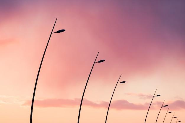 극적인 일몰 분홍색 하늘 동안 곡선 된 가로등의 실루엣