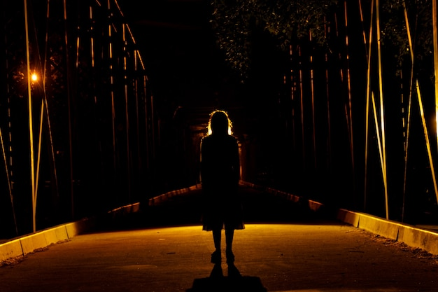 Силуэт темной девушки на мосту