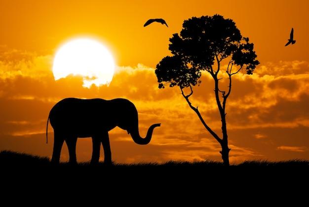 象のシルエットデザインの要素
