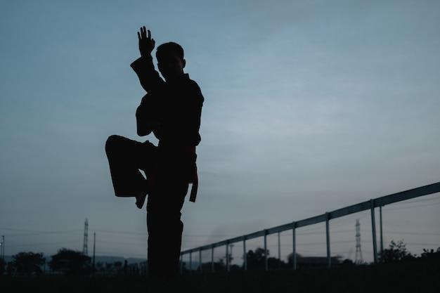 紺碧の空を背景に片足の潮の動きを上げた男性戦士のシルエット