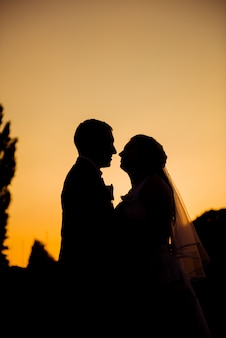 日没時にキスする新婚夫婦のシルエット