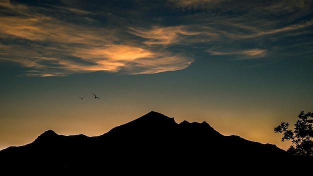 일몰 산의 실루엣과 아름다운 하늘에서 날아 다니는 새