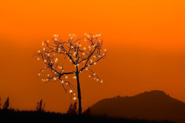 日没時の山の木のシルエット