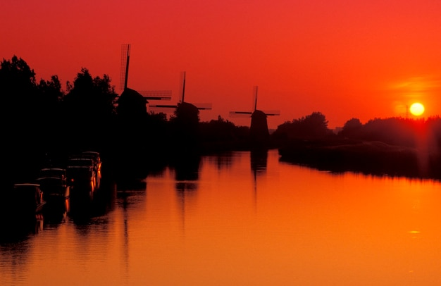 Silhouette of old-fashioned, wooden windmills along canal with yellow setting sun in background