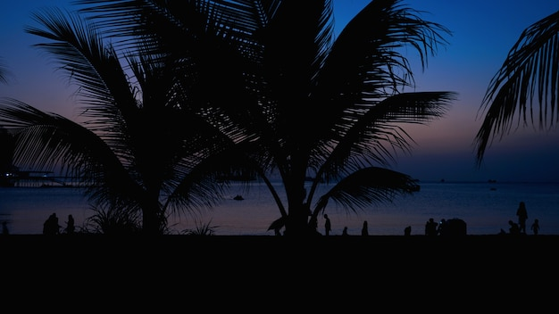 Silhouette of people on tropical beach at sunset - tourists enjoying time in summer vacation - travel, holidays and landscape concept - focus on palm tree - blue color