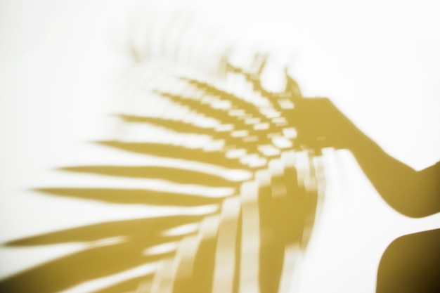 Silhouette of a person holding blurred palm leaf on white backdrop