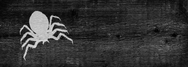 The silhouette of a scary spider. dark wooden background. the concept of the halloween holiday. copy space