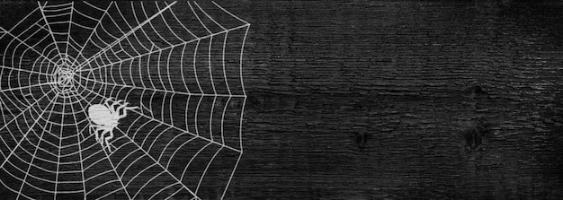 The silhouette of a spider in a web. dark wooden background. the concept of the halloween holiday. copy space.