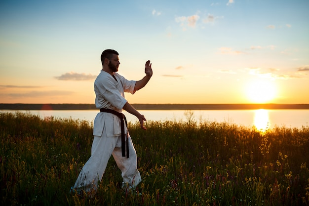 Silhouette of sportive man training karate in field at sunrise.
