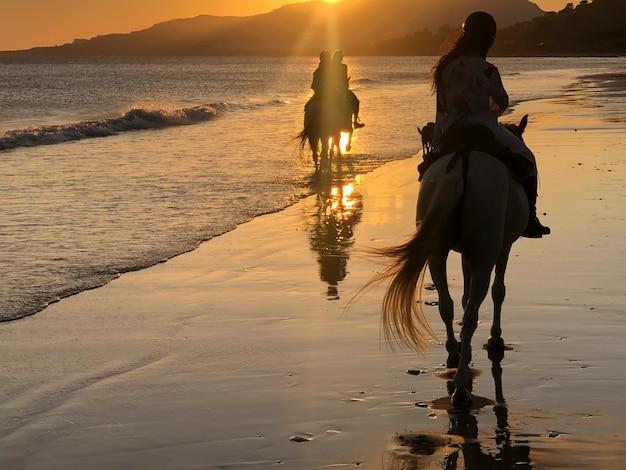 日没時にビーチで馬に乗る3人の女の子のシルエット