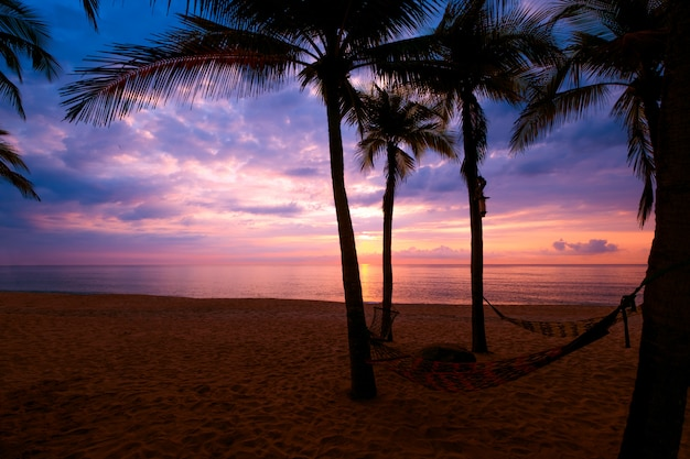 Silhouette of tropical beach during sunset twilight