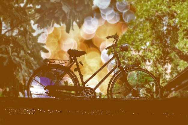 Silhouette vintage bicycle with bokeh light nature