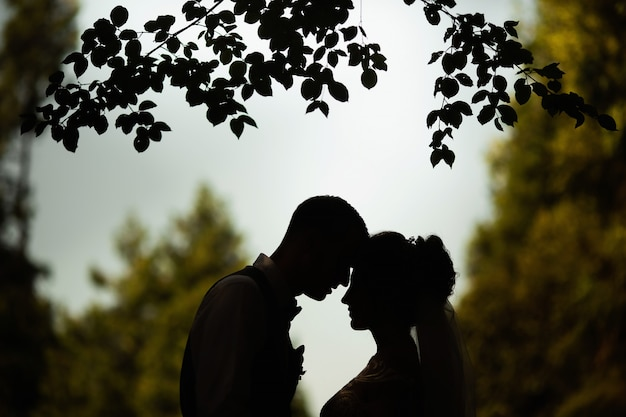 Silhouette of a wedding couple against the background of nature